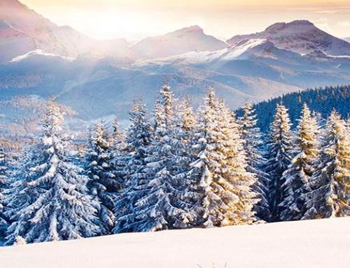 11 Добри предложения за Ски почивки в България!