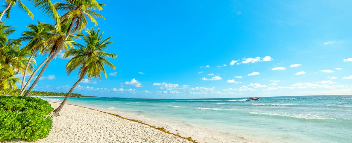 Полети до Доминикана (Пунта Кана)