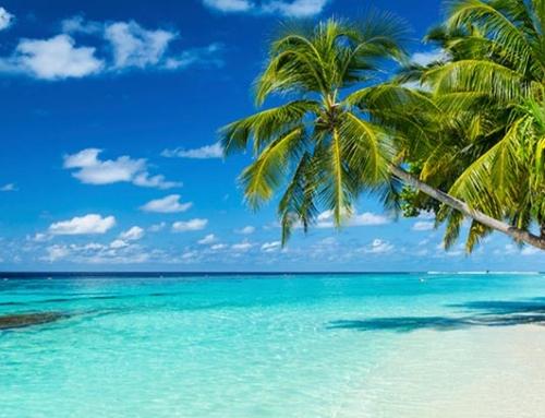Полети до Доминикана, Канкун и Маями от Брюксел за 300 Евро!