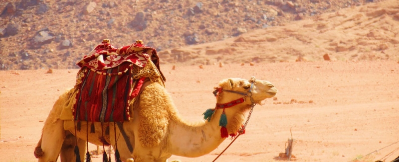 пътуване до йордания